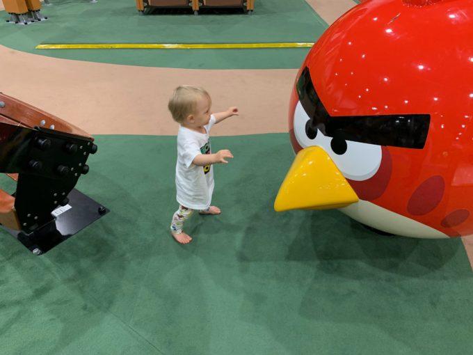 angry birds seikkailupuisto